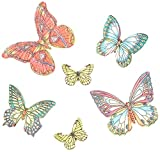 Cake Company Schmetterlinge Esspapier 25 Stück 2er Pack (2 x 10 g)